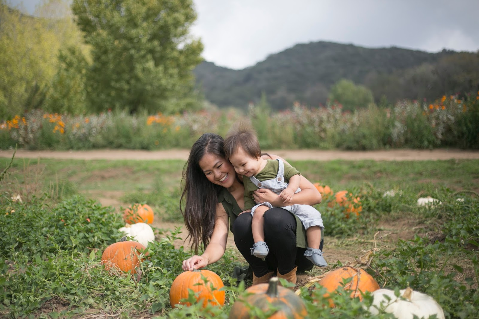 Oak Glen {Apple Picking + Pumpkin Patch}